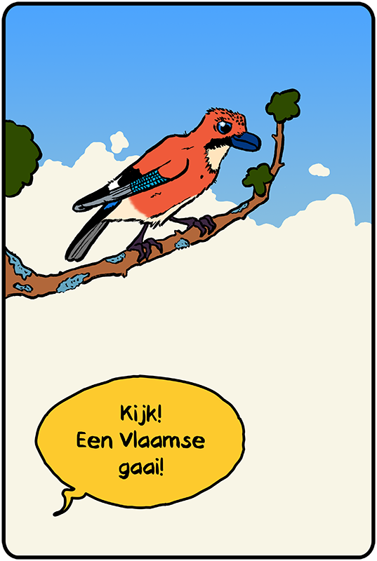 Vlaamse gaai strip preview
