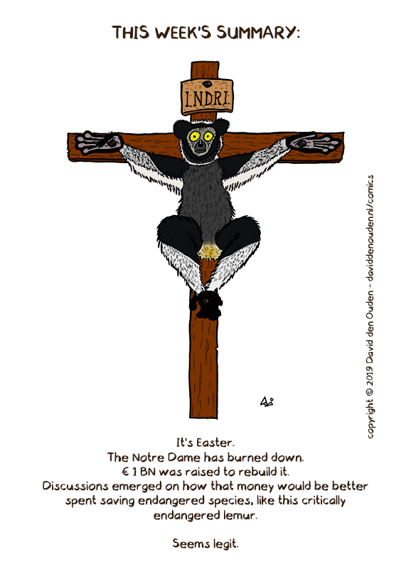 This week's summary: