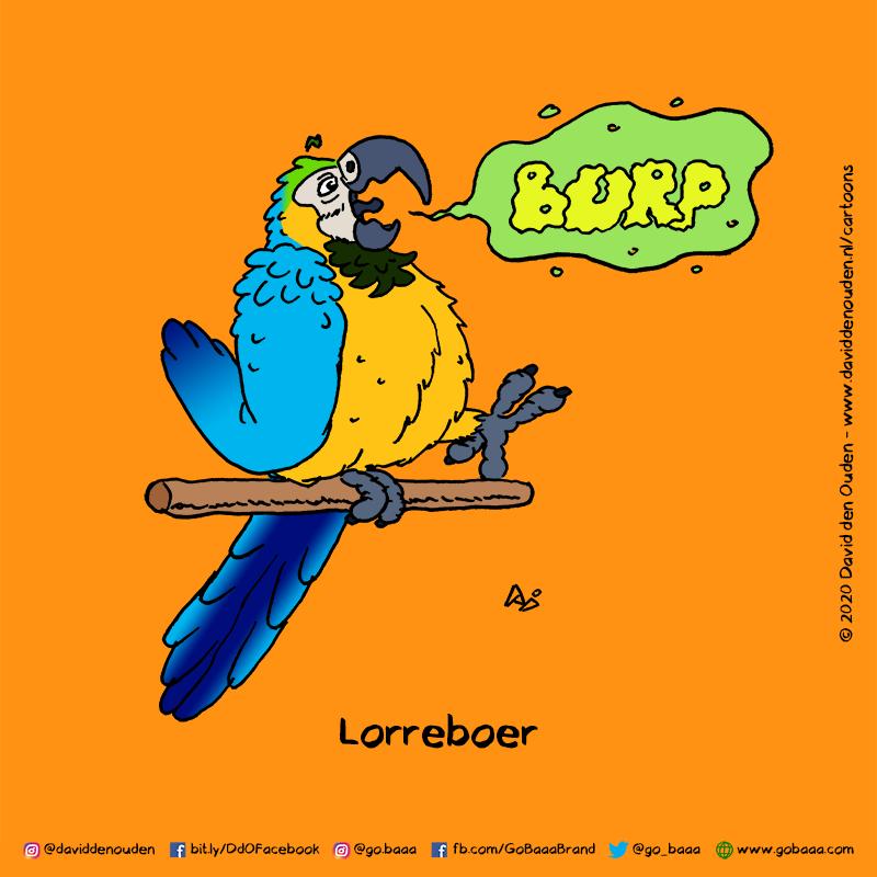 Lorreboer